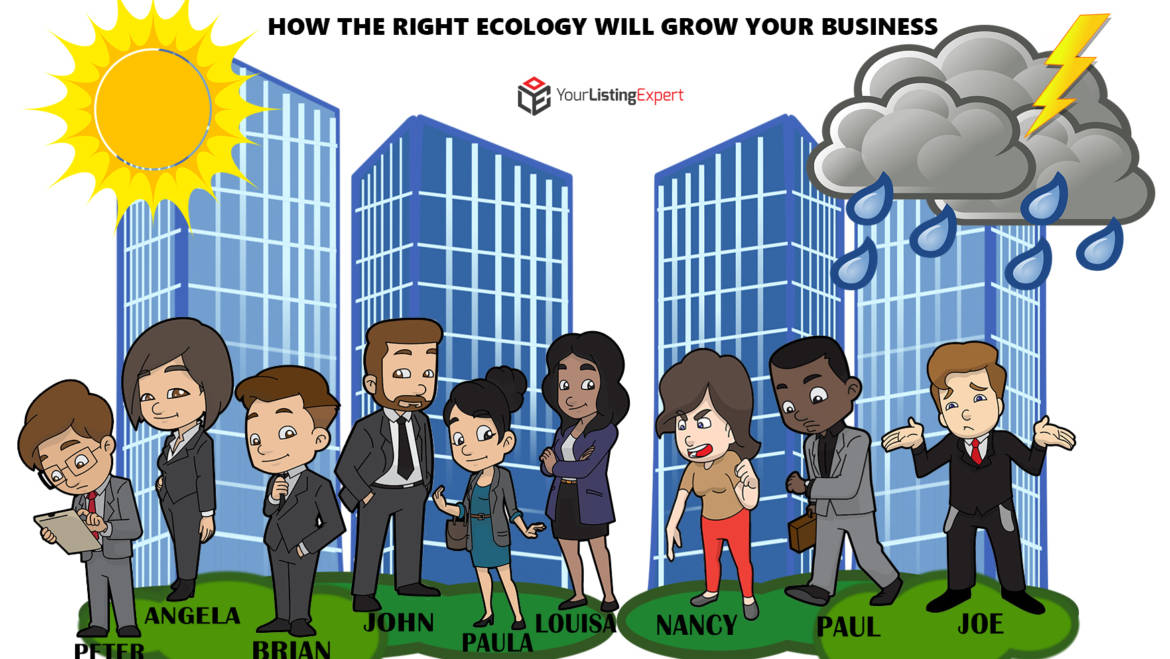 How The Right Ecology Will Grow Your Business