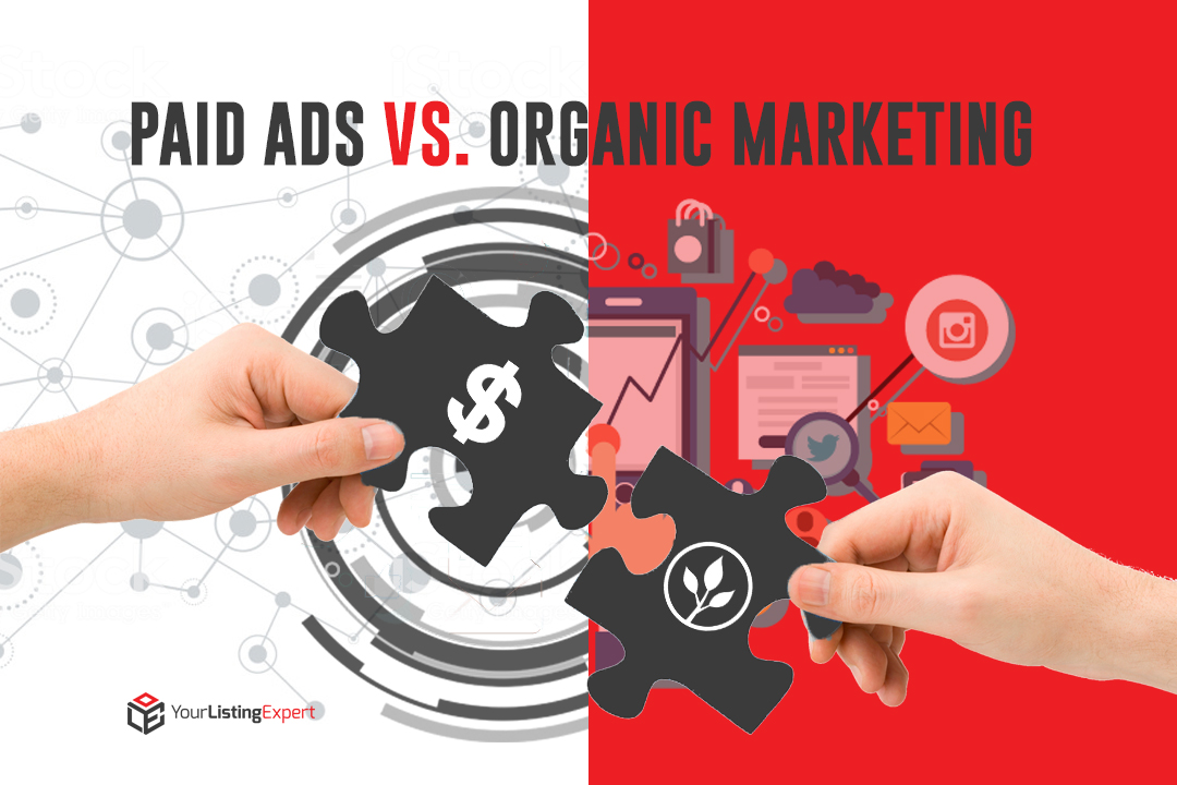 Paid Ads vs. Organic Marketing